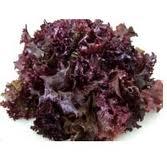 Alface Roxa (unidade) - orgânico