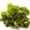 Chicória Comum (unidade) - orgânico
