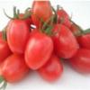 Tomate Grape Vermelho (250g) - orgânico