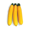 Abobrinha Italiana Amarela (Kg) - orgânico